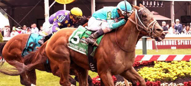 Dash express horse betting portman park horse racing betting online