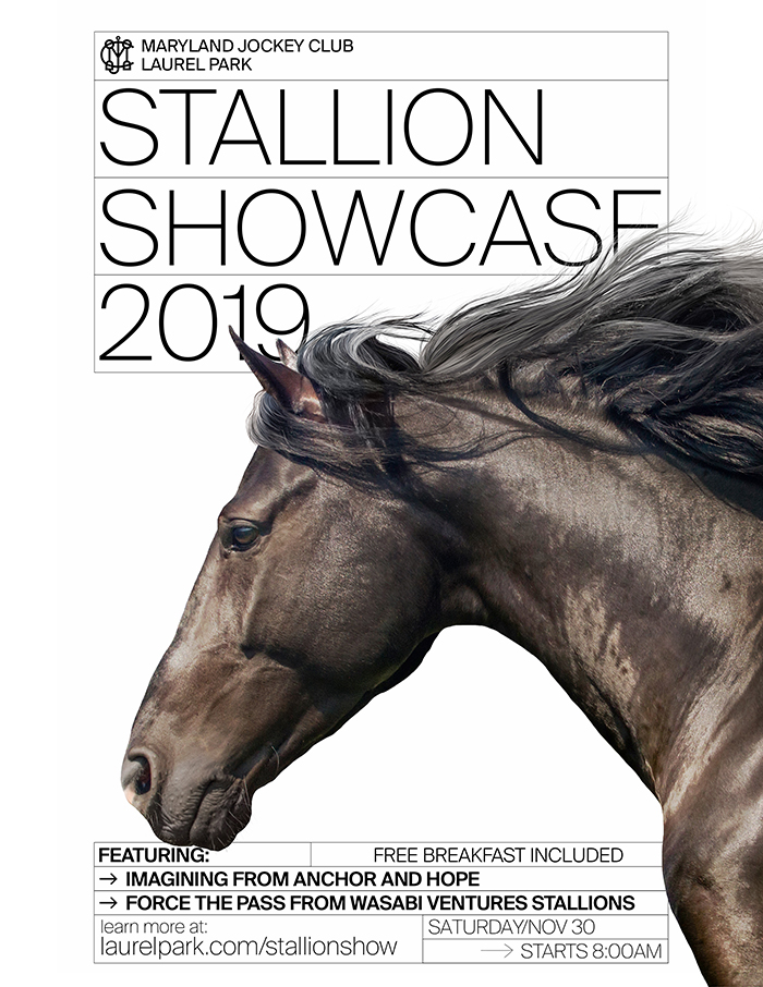 Stallion Showcase Day 11/30 starts 8am