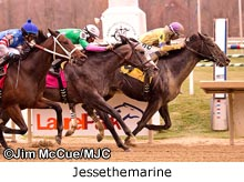 Jessethemarine taking the 2013 James F. Lewis Stakes at Laurel Parl